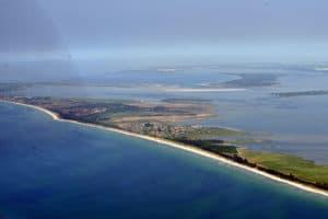 Ossabaw – hòn đảo xanh quyến rũ nhất thành phố Savannah