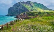 Top những thắng cảnh nhất định phải đến thăm ở Hàn Quốc