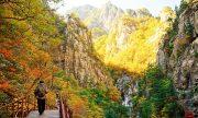 Mách bạn những điểm du lịch mùa hè nổi bật ở Seoul, Hàn Quốc